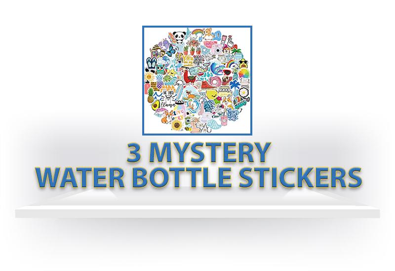 Three Mystery Water Bottle Stickers